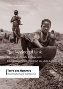 The Neglected Link - Effects of Climate Change and Environmental Degradation on Child Labour